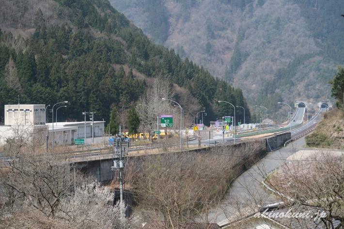 群生地から中国道を見る