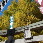 筒賀の大銀杏-3(2018年11月2日:g7x-mark2で撮影)