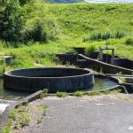千足池の円筒分水