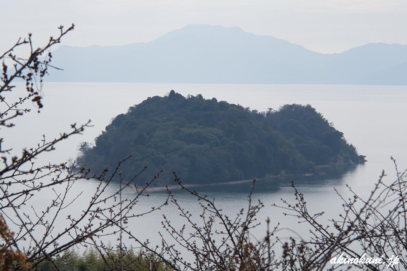 ハート島と河津桜