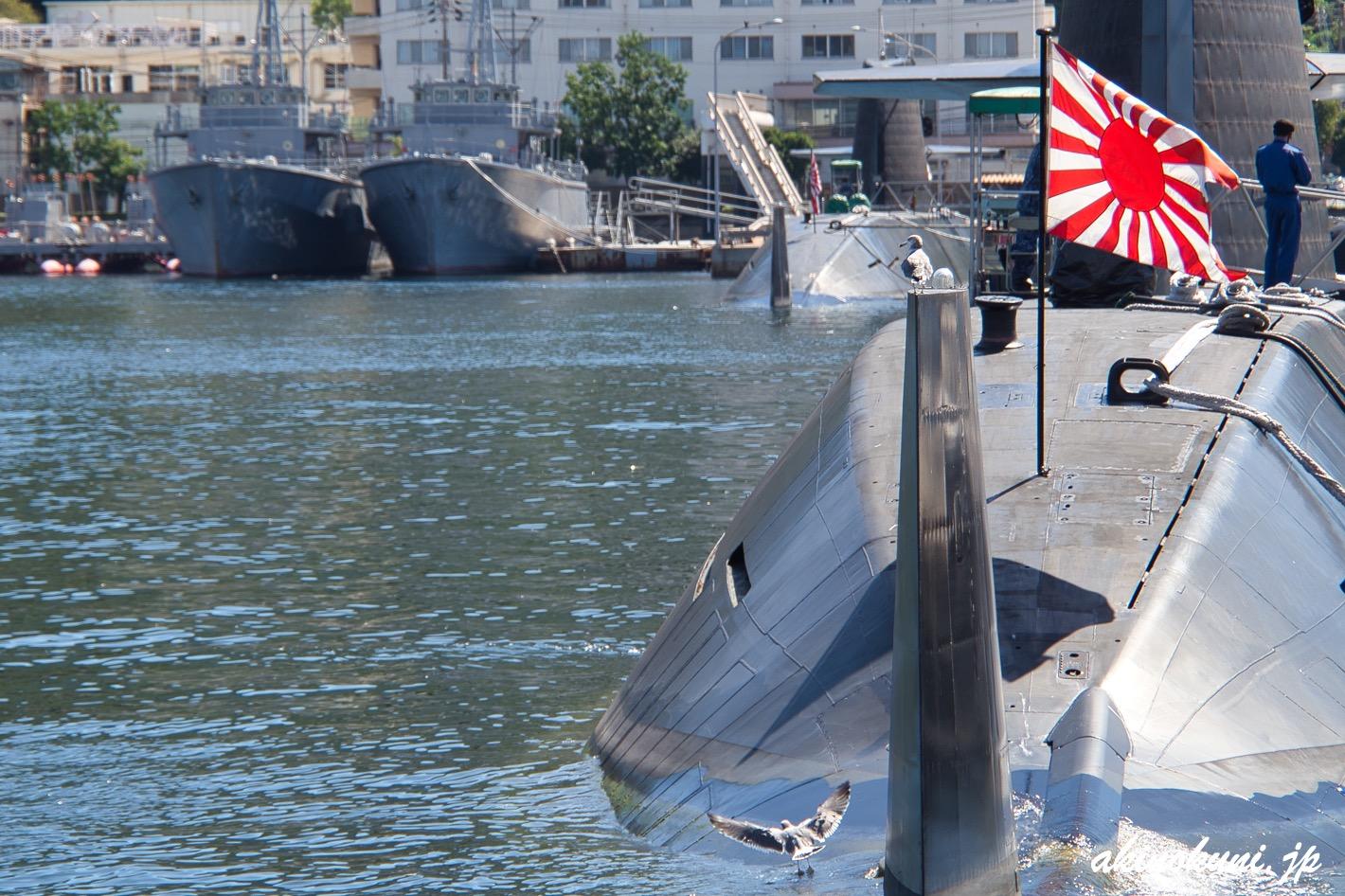 潜水艦で遊ぶカモメたち